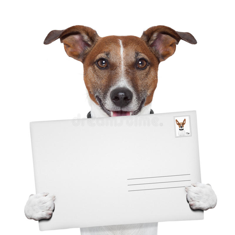 Post envelope mail stamp dog stock images