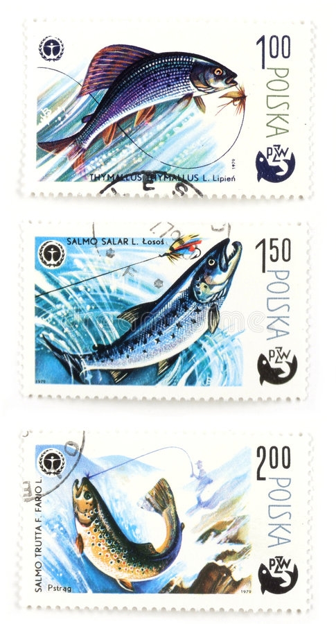 Post stamps with angling and f. Collectible stamps from Poland. Set with offshore angling royalty free stock photo