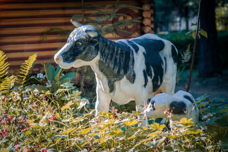 Postać krowa z łydką w trawie przeciw tłu drewniany wioska dom Organicznie uprawia ziemię bydło zdjęcie royalty free
