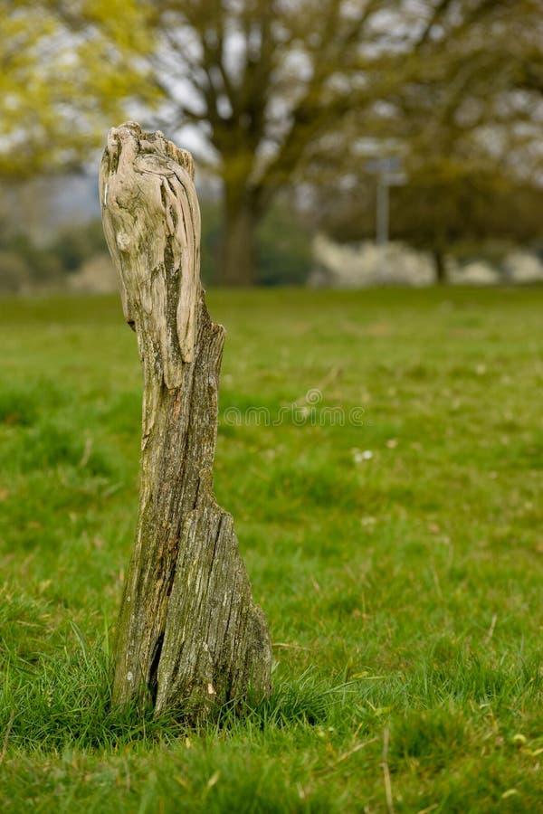 Posta di legno stante, terreno comunale di Hungerford immagine stock