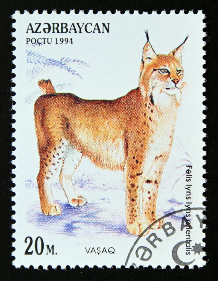 Postage stamp Azerbaijan 1994, Eurasian Lynx, Lynx lynx orientalis stock photos