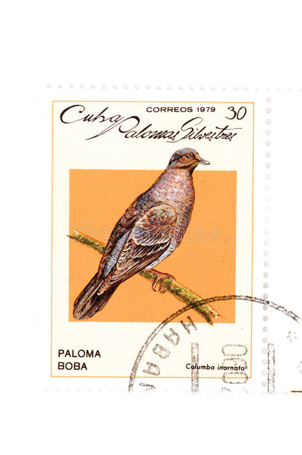 Download Postage Stamp Bird Close Up Stock Image - Image of wildlife, shipping: 7410789