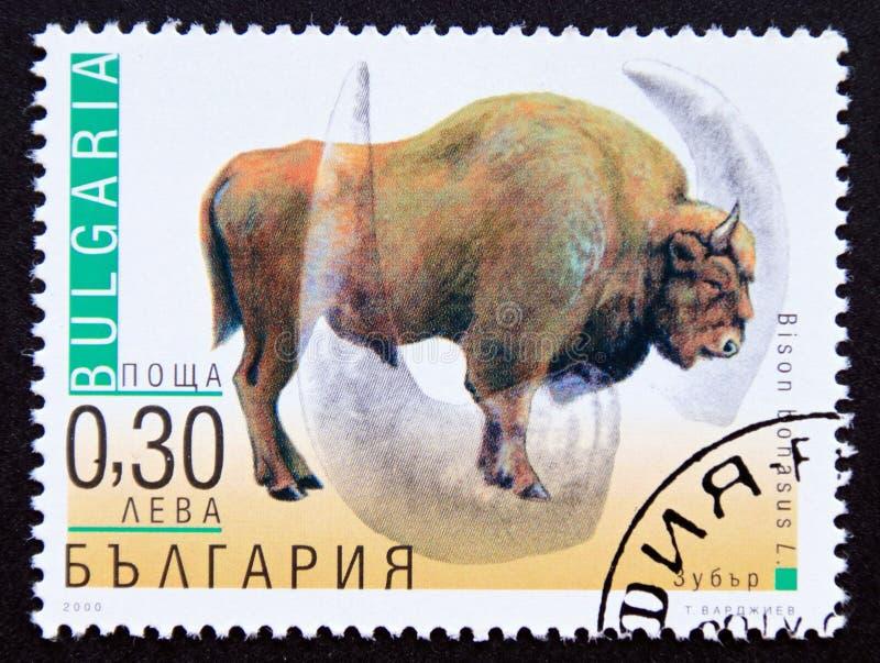 Postage stamp Bulgaria 2000, European Bison, Bison bonasus stock photo
