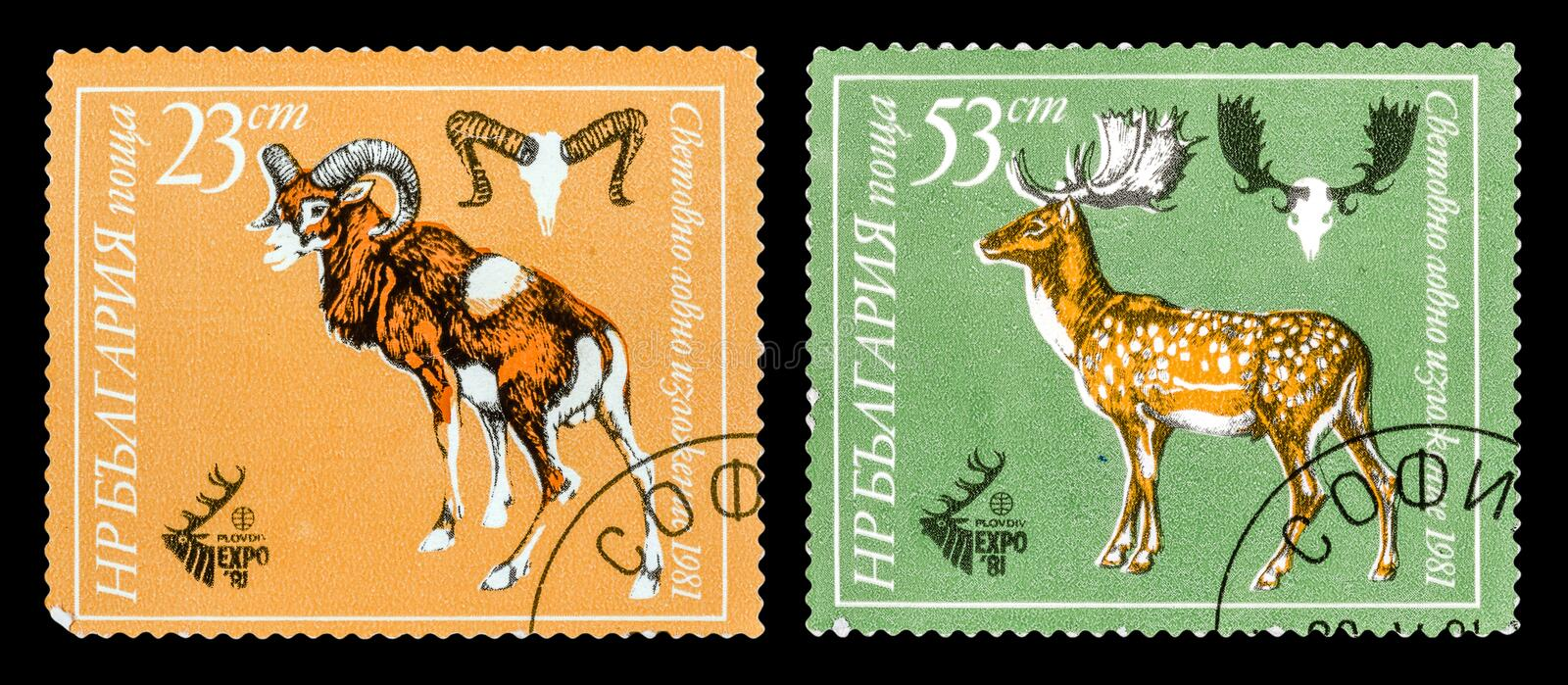 The Postage Stamp royalty free stock images