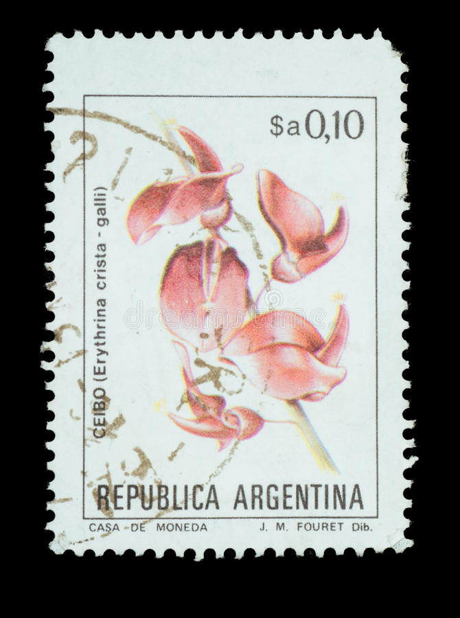 Postage Stamp isolated. TERNOPIL, UKRAINE - OCTOBER 19, 2016: ARGENTINA - CIRCA 1983: a stamp printed in the Argentina shows Cockspur Coral Tree, Erythrina royalty free stock photo
