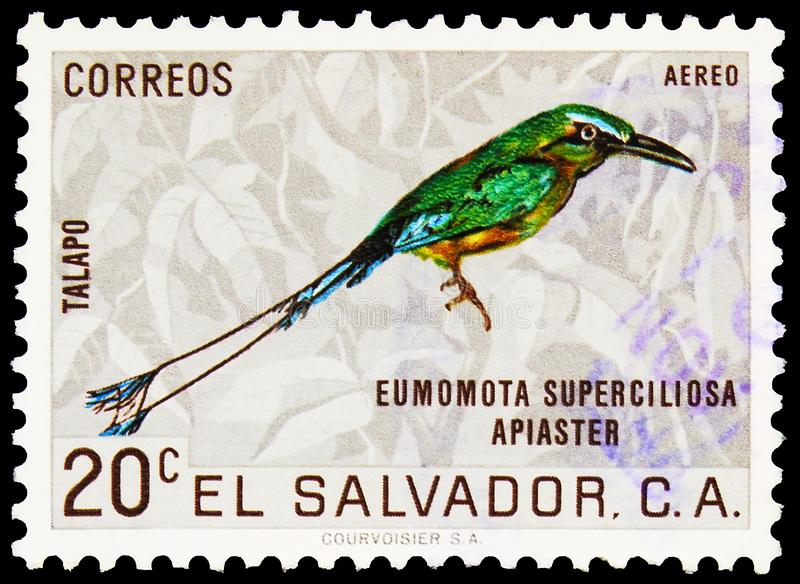 Postage stamp printed in El Salvador shows Turquoise-browed Motmot (Eumomota superciliosa), 20 c - Salvadoran centavo, Fauna serie. MOSCOW, RUSSIA - SEPTEMBER 27 royalty free stock image