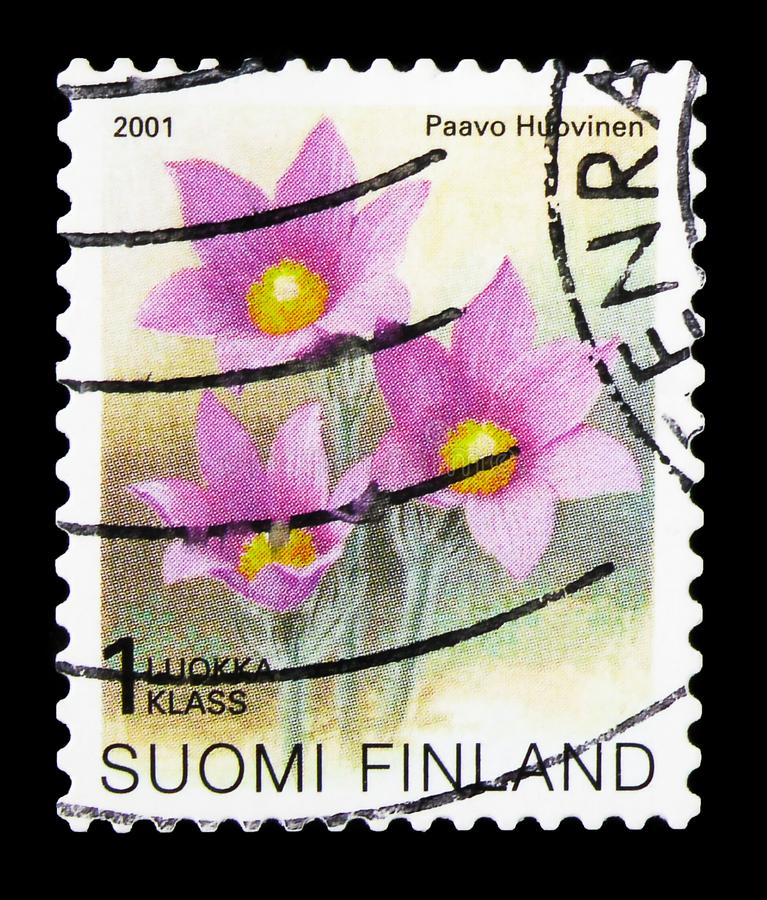 Postage stamp printed in Finland shows Eastern pasqueflower (Pulsatilla patens) - Type I, Regional flowers serie, circa 2001. MOSCOW, RUSSIA - SEPTEMBER 27, 2019 royalty free stock photos