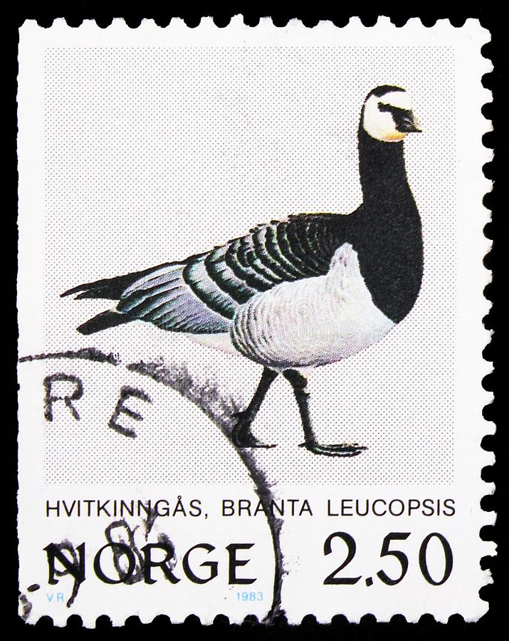 Postage stamp printed in Norway shows Barnacle Goose (Branta leucopsis), Birds serie, circa 1983. MOSCOW, RUSSIA - SEPTEMBER 27, 2019: Postage stamp printed in royalty free stock photos