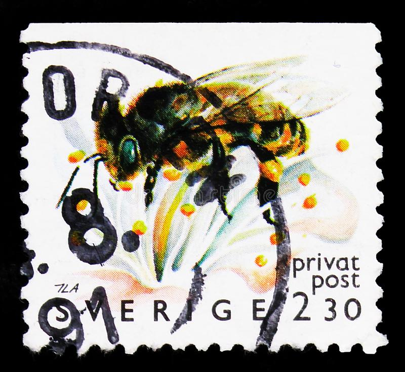 Postage stamp printed in Sweden shows European Honey Bee (Apis mellifera), Beekeeping - Discount Stamps serie, circa 1990. MOSCOW, RUSSIA - SEPTEMBER 27, 2019 stock images