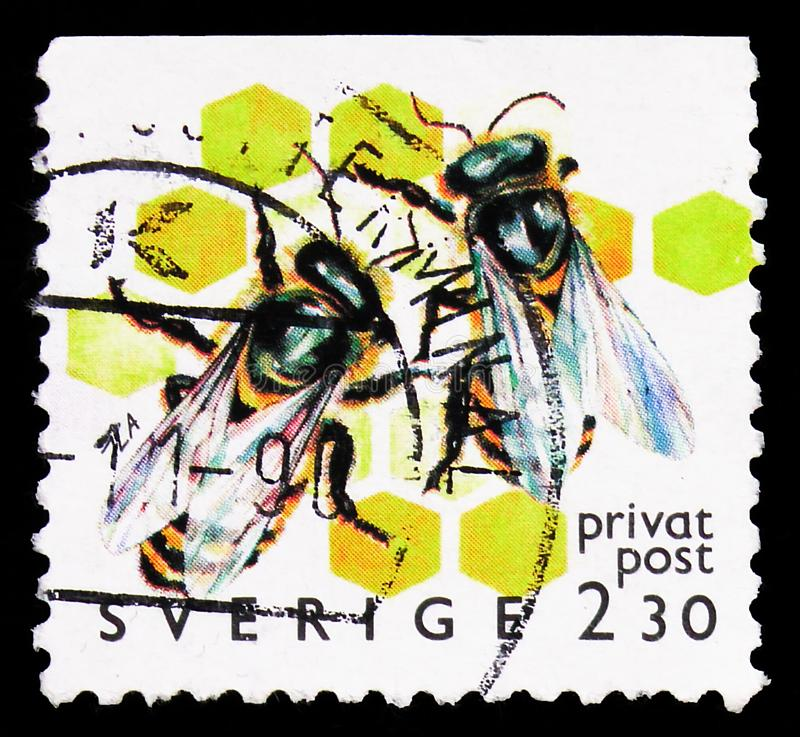 Postage stamp printed in Sweden shows European Honey Bee (Apis mellifera), Beekeeping - Discount Stamps serie, circa 1990. MOSCOW, RUSSIA - SEPTEMBER 27, 2019 stock photo
