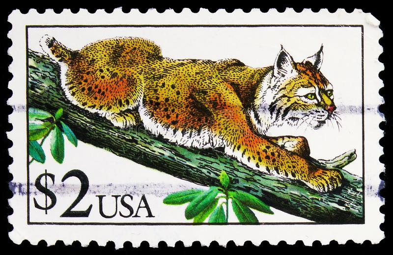 Postage stamp printed in United States shows Bobcat (Lynx rufus), Flora and Fauna Issue serie, circa 1990. MOSCOW, RUSSIA - SEPTEMBER 27, 2019: Postage stamp stock image