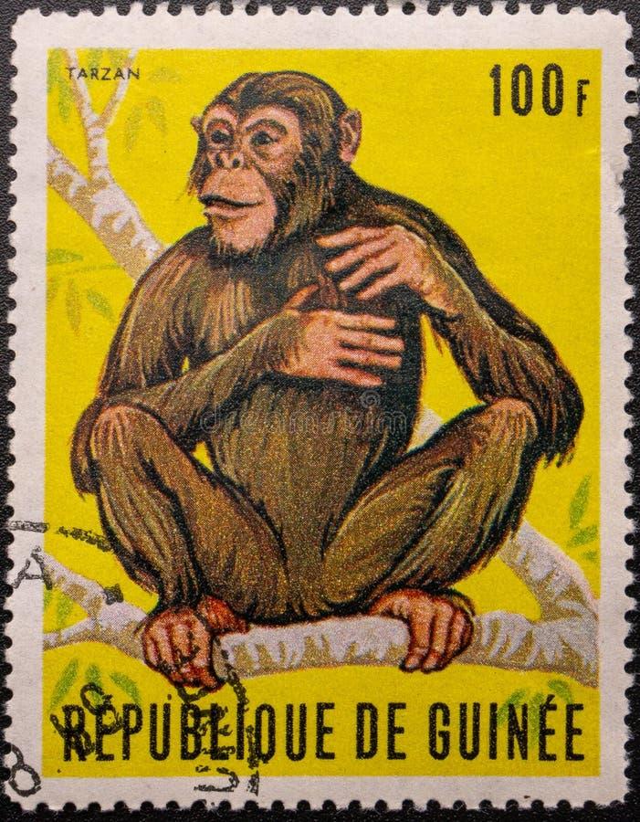 Postage Stamp. 1969. Republic of Guinea. Chimpanzee Tarzan. Aged, ancient, animal, antique, art, canceled, collection, communication, correspondence, envelope royalty free stock image
