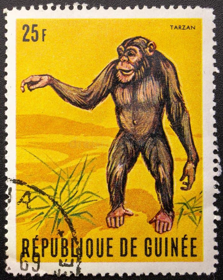 Postage Stamp. 1969. Republic of Guinea. Chimpanzee Tarzan. Aged, ancient, animal, antique, art, canceled, collection, communication, correspondence, envelope stock photo