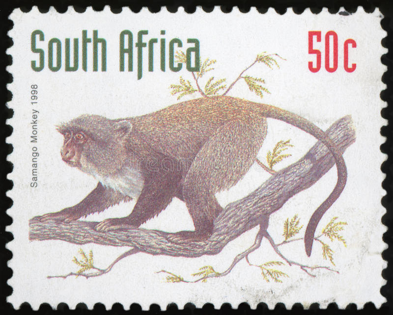 Postage stamp - South Africa. High quality stock photo