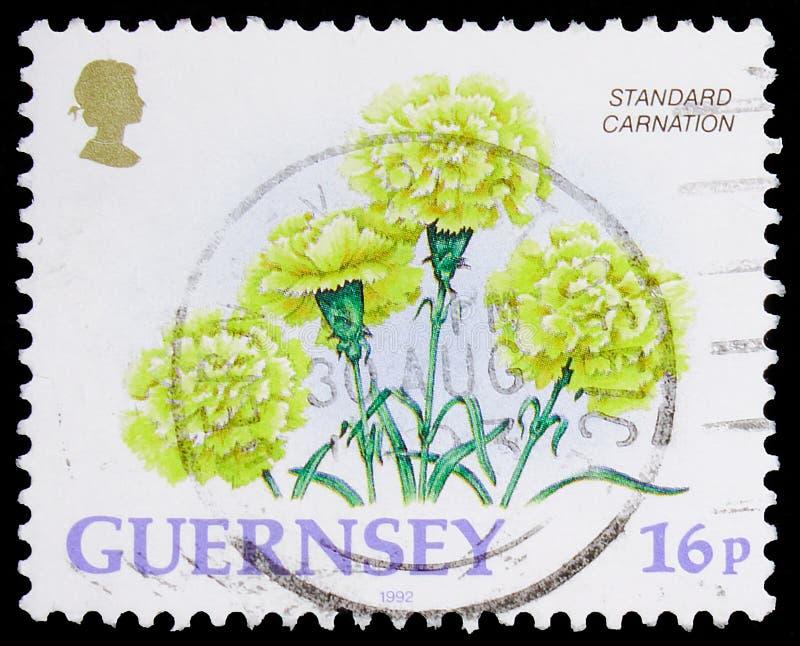 Postagstämpel i Förenade kungariket visar Standard Carnation, Horticultural Exports - Guernsey Flowers serie, circa 1992 arkivbild