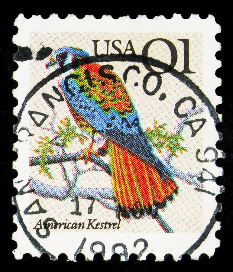 Postagstämpel i Förenta staterna visar American Kestrel (Falco sparverius), Flora and Fauna Issue serie, circa 1991 royaltyfria bilder