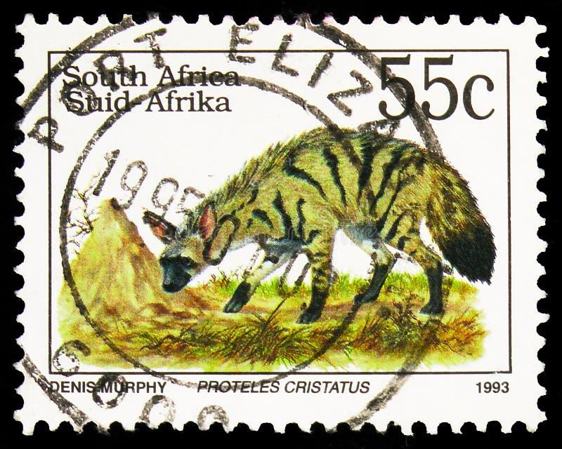 Postagstämpel i Sydafrika visar Aardvarg (Proteles cristatus), Definitives Endangered Animals serie, circa 1993 royaltyfria bilder
