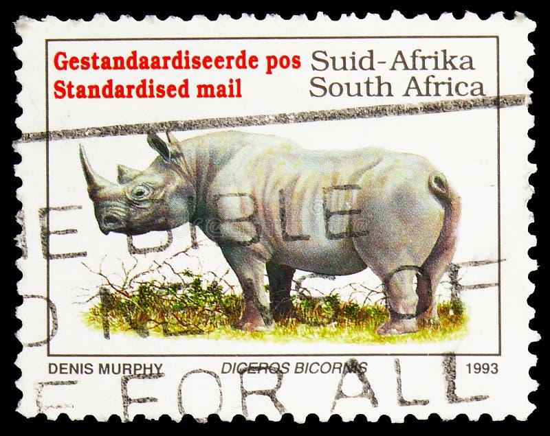 Postagstämpel i Sydafrika visar Black Rhinoceros (Diceros bicornis), Definitives Endangered Animals serie, circa 1993 royaltyfri foto