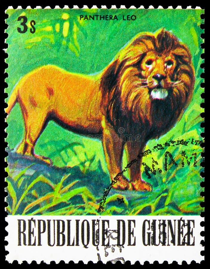 Postagstämpel tryckt i Guinea visar Lion (Panthera leo), Endangered Animals serie, circa 1977 arkivbilder