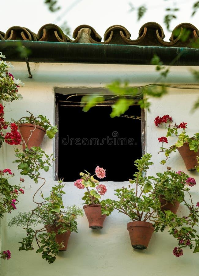 Postal andaluz típica con las plantas y las macetas de la arcilla imágenes de archivo libres de regalías