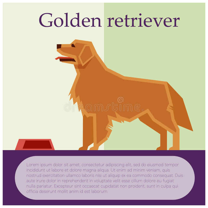 Postal colorida del golden retriever stock de ilustración