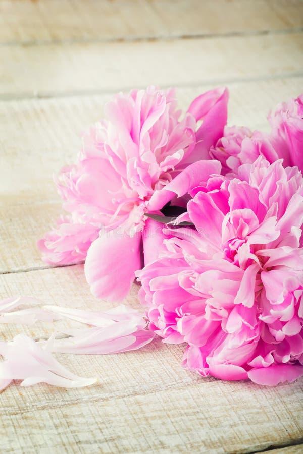 Postal con la peonía elegante de las flores imagen de archivo libre de regalías