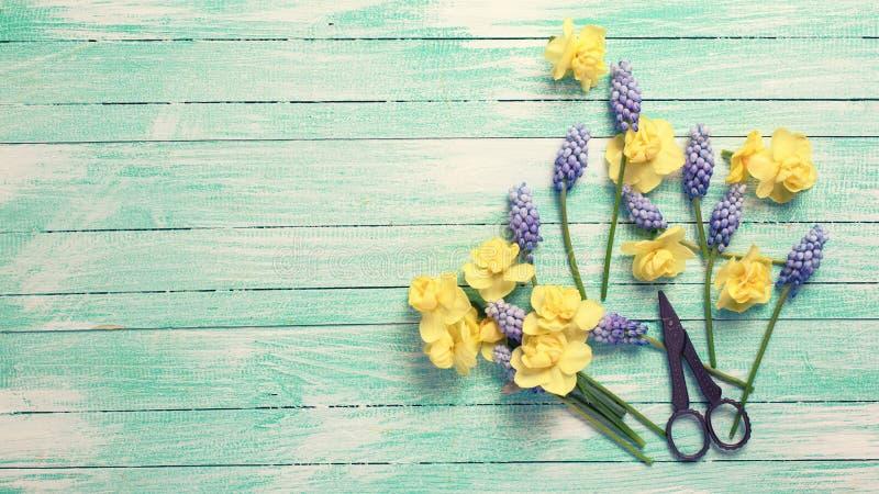 Postal con las flores de la primavera imagen de archivo
