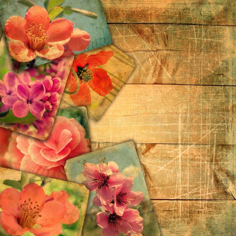 Postales viejas hermosas en tablones de madera con los rasguños stock de ilustración