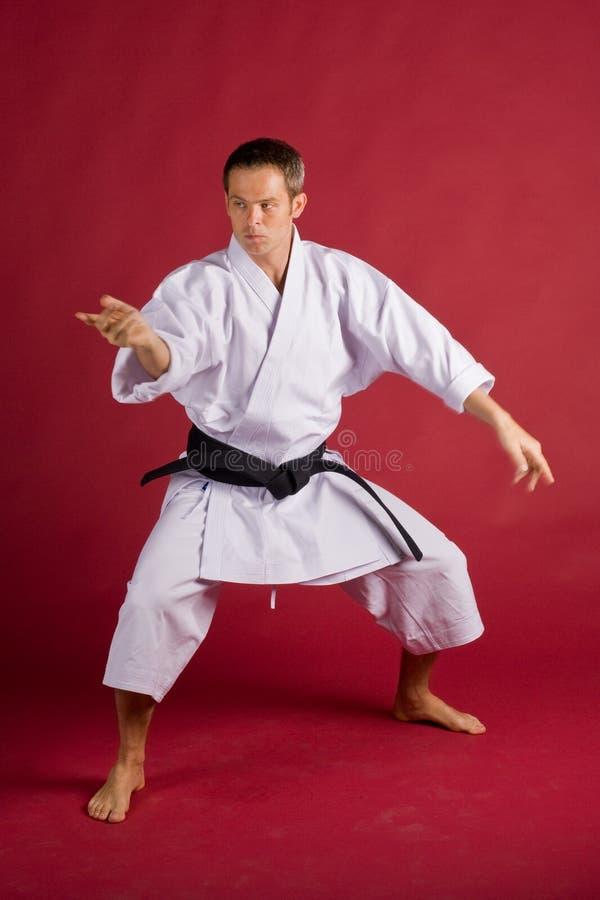 postawa karate. obrazy stock