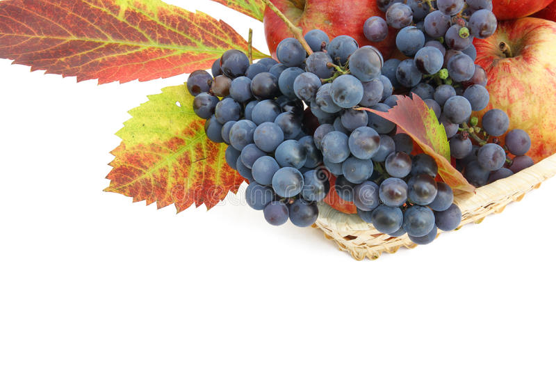 Download Postcard With Apples And Grapes Stock Image - Image: 17243713