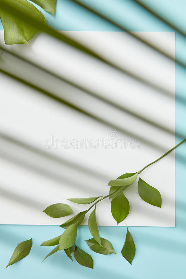 Postcard decorated leavs. Vertical frame on a blue background decorated with leaves in the corners. Thin stripes of leaves superimposed on the background flat stock photography