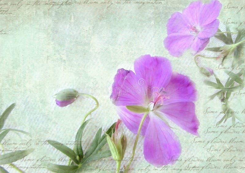 Postcard floral template. stock illustration