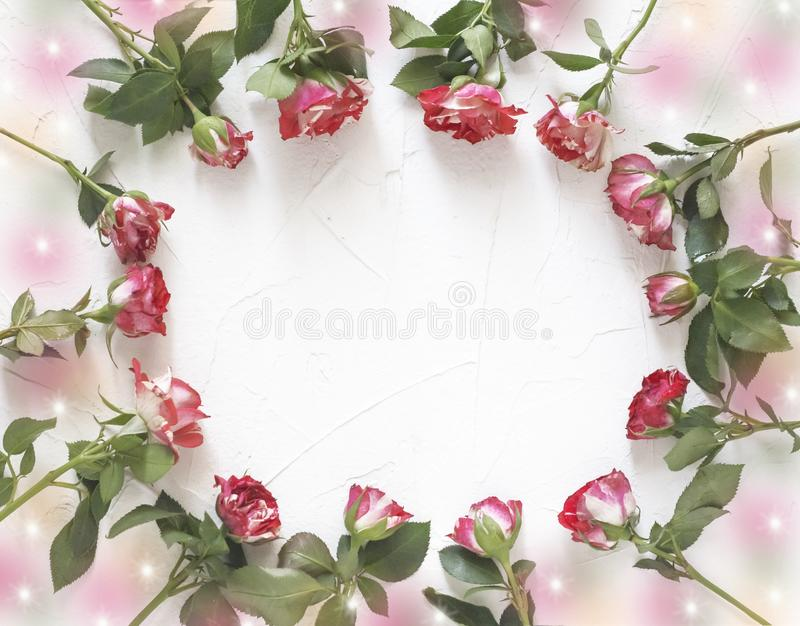 Postcard of fresh roses forming a round frame with a copy of the space royalty free stock photography