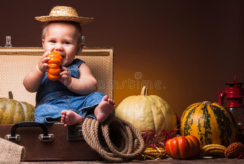 Postcard to the day of Thanksgiving, cute baby stock photo