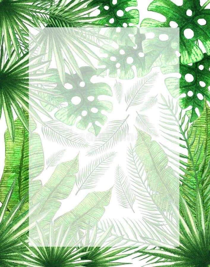 Exotic Floral vertical frame for Invitation, Flyer or Card. vector illustration