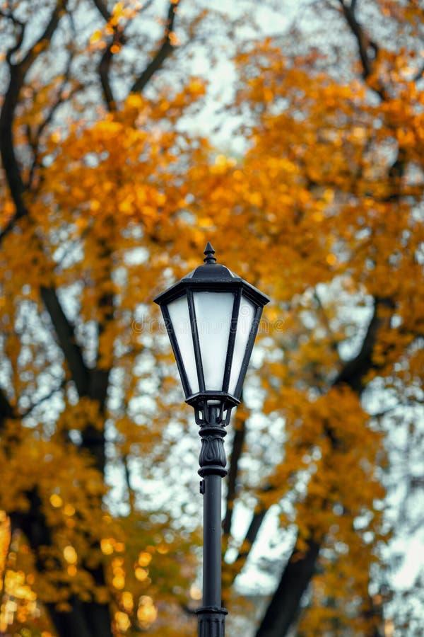 Poste de luz velho em um fundo de árvores do outono imagens de stock royalty free