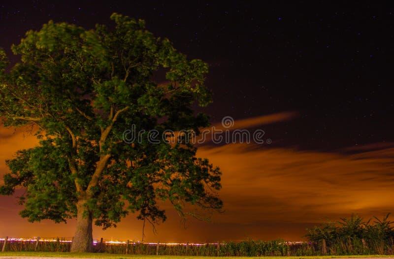 Poste de nuit image stock