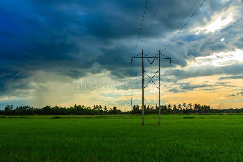 Poste eléctrico en campo y el cielo verdes de Rainny foto de archivo