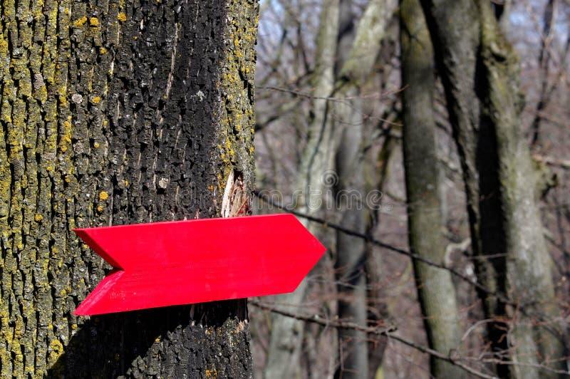 Poste indicador de madera imagen de archivo