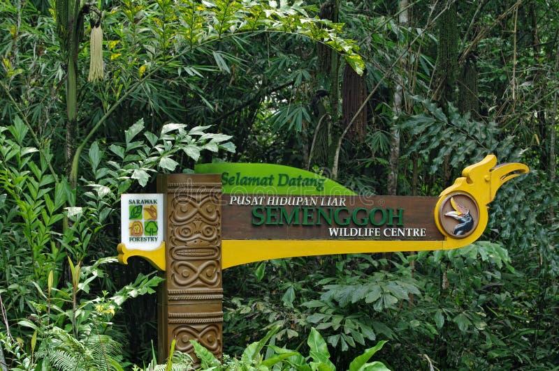 Poste-letrero de los againts de la silvicultura de Sarawak de árboles tropicales verdes, Malasia foto de archivo