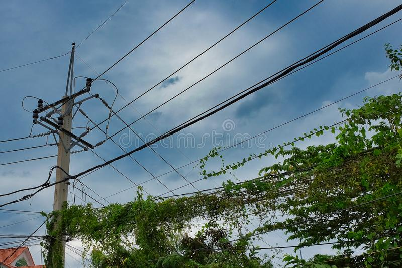 Poste para las líneas de comunicaciones urbanas, líneas eléctricas, vegetación verde, cielo cubierto imagenes de archivo