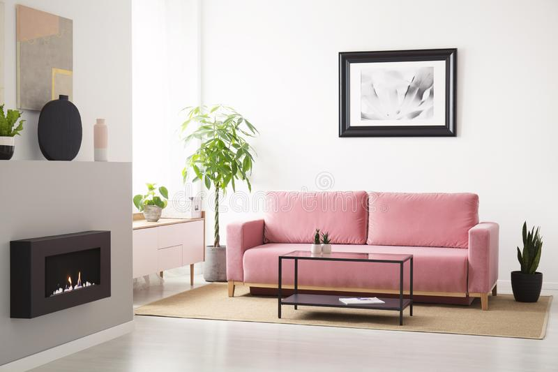 Poster above pink sofa between plants in white living room interior with fireplace. Real photo. Concept royalty free stock photo