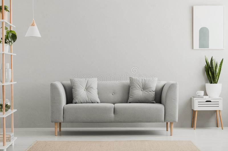Poster above white cabinet with plant next to grey sofa in simple living room interior. Real photo stock image
