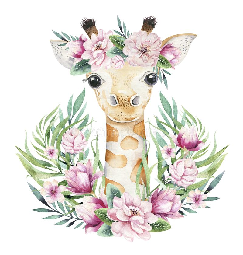 A poster with a baby giraffe. Watercolor cartoon giraffetropical animal illustration. Jungle exotic summer print. A poster with a baby giraffe. Watercolor stock image