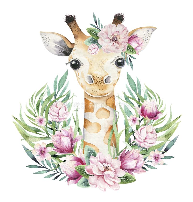 A poster with a baby giraffe. Watercolor cartoon giraffetropical animal illustration. Jungle exotic summer print. A poster with a baby giraffe. Watercolor royalty free stock image