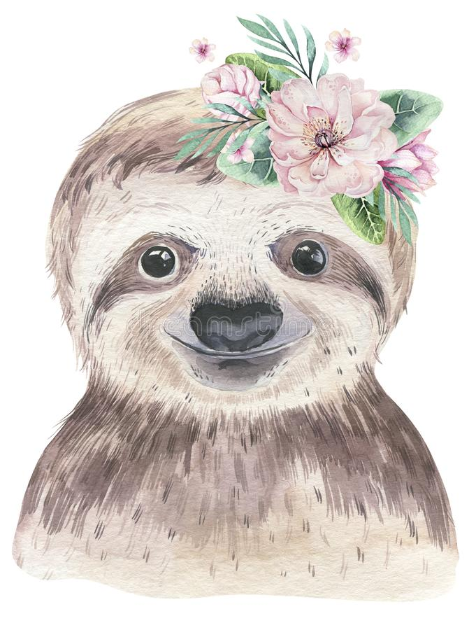 A poster with a baby sloth. Watercolor cartoon sloth tropical animal illustration. Jungle exotic summer print. royalty free stock photo