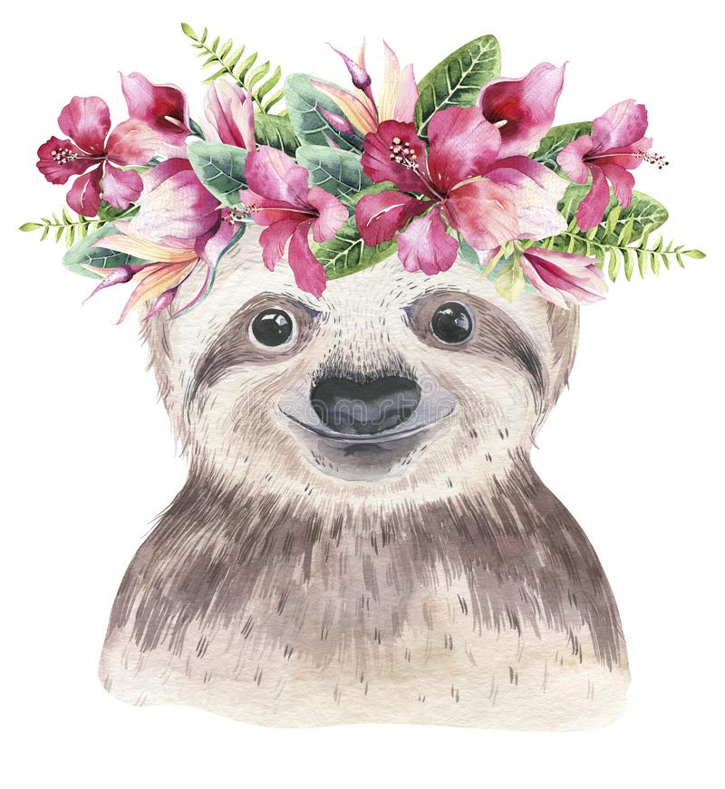 A poster with a baby sloth. Watercolor cartoon sloth tropical animal illustration. Jungle exotic summer print. royalty free stock photos