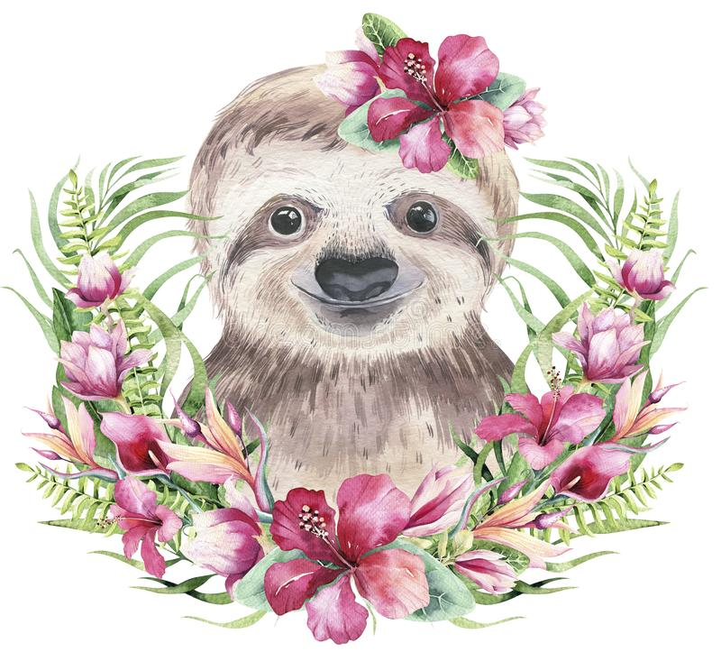 A poster with a baby sloth. Watercolor cartoon sloth tropical animal illustration. Jungle exotic summer print. vector illustration