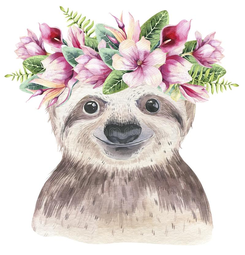 A poster with a baby sloth. Watercolor cartoon sloth tropical animal illustration. Jungle exotic summer print. A poster with a baby sloth. Watercolor cartoon vector illustration