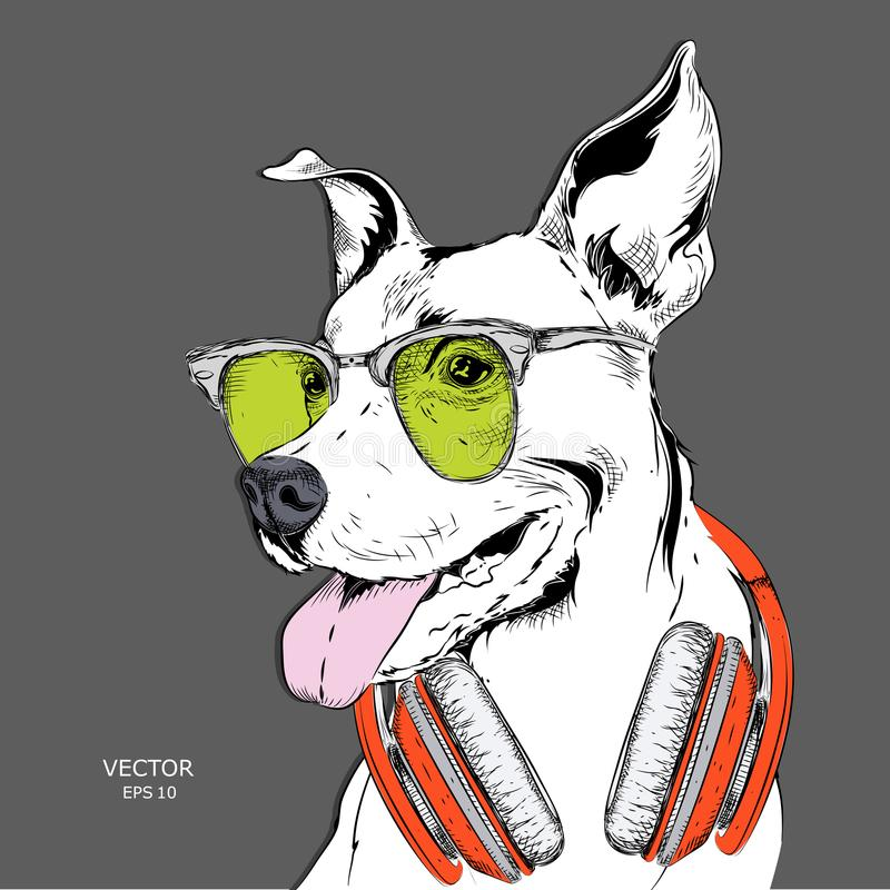 The poster of the dog portrait in hip-hop hat and with headphones. Vector illustration. The poster of the dog portrait in hip-hop hat and with headphones royalty free illustration